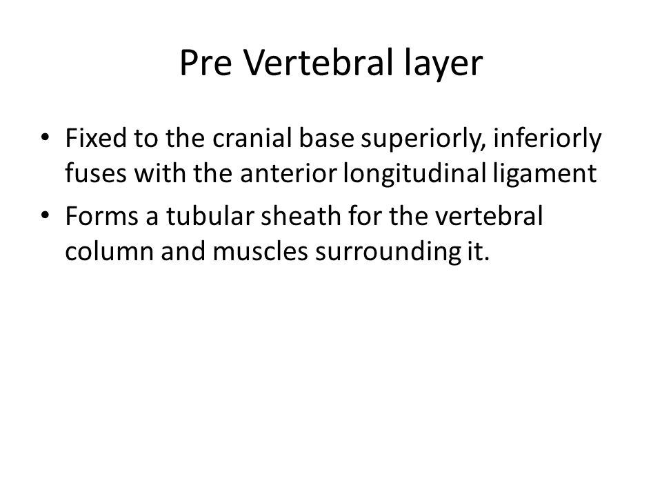Pre Vertebral layer Fixed to the cranial base superiorly, inferiorly fuses with the anterior longitudinal ligament.