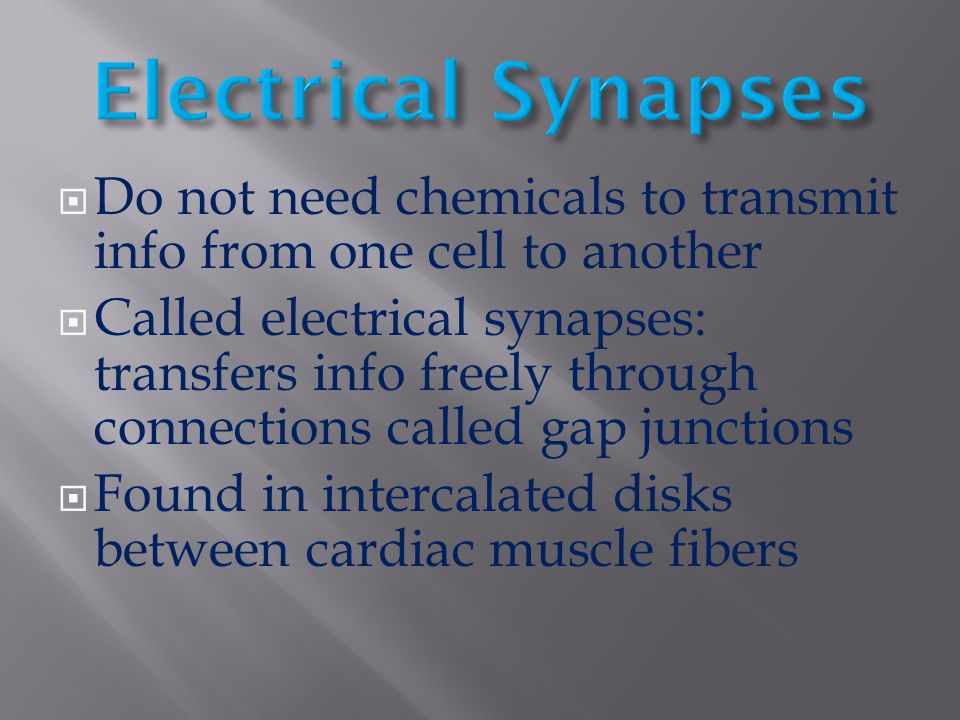 Electrical Synapses Do not need chemicals to transmit info from one cell to another.