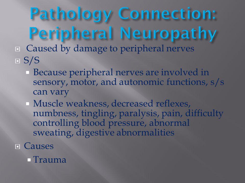 Pathology Connection: Peripheral Neuropathy