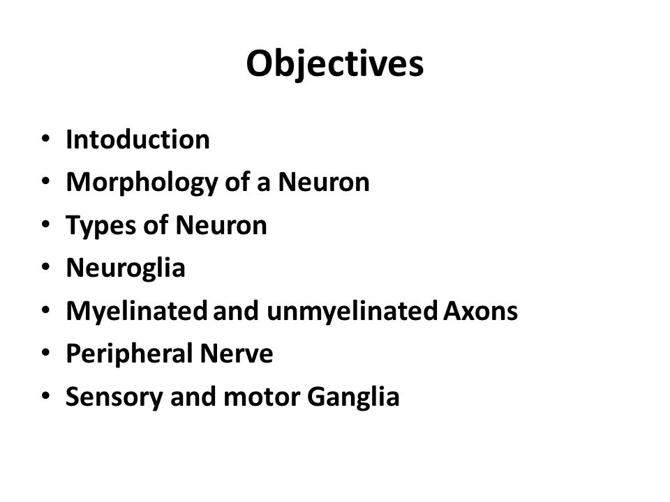 Objectives Intoduction Morphology of a Neuron Types of Neuron
