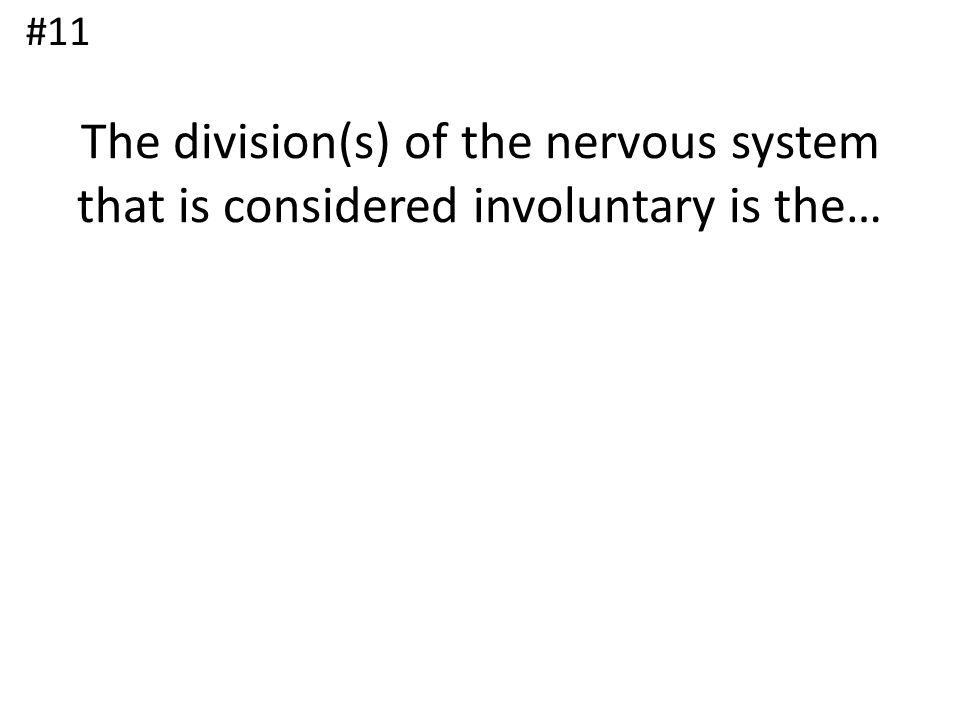 #11 The division(s) of the nervous system that is considered involuntary is the…