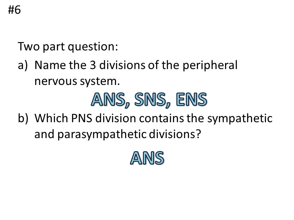 ANS, SNS, ENS ANS #6 Two part question:
