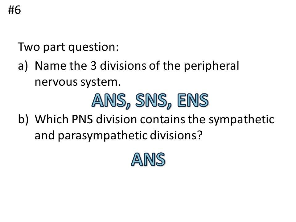 ANS, SNS, ENS ANS #6 Two part question: