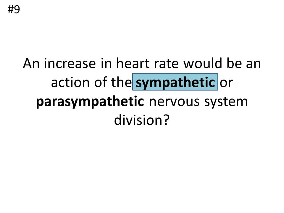 #9 An increase in heart rate would be an action of the sympathetic or parasympathetic nervous system division