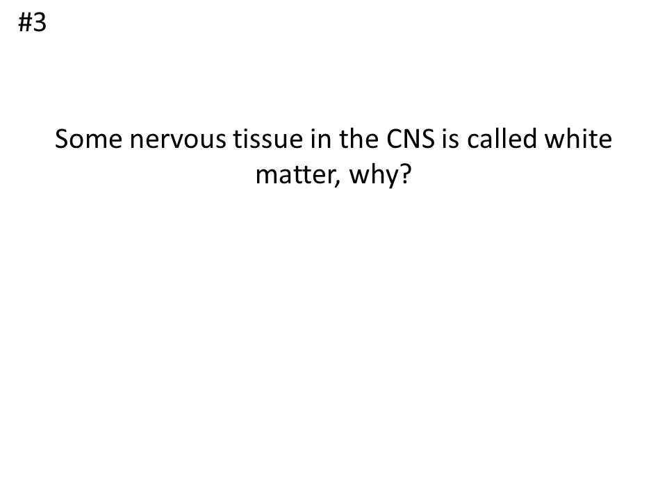 Some nervous tissue in the CNS is called white matter, why