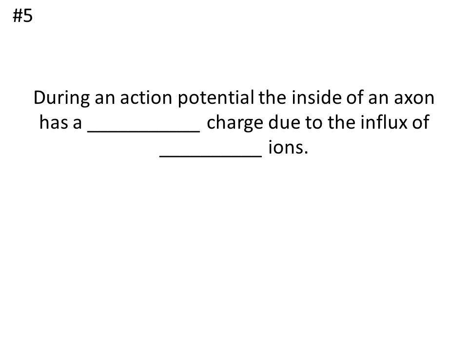 #5 During an action potential the inside of an axon has a ___________ charge due to the influx of __________ ions.