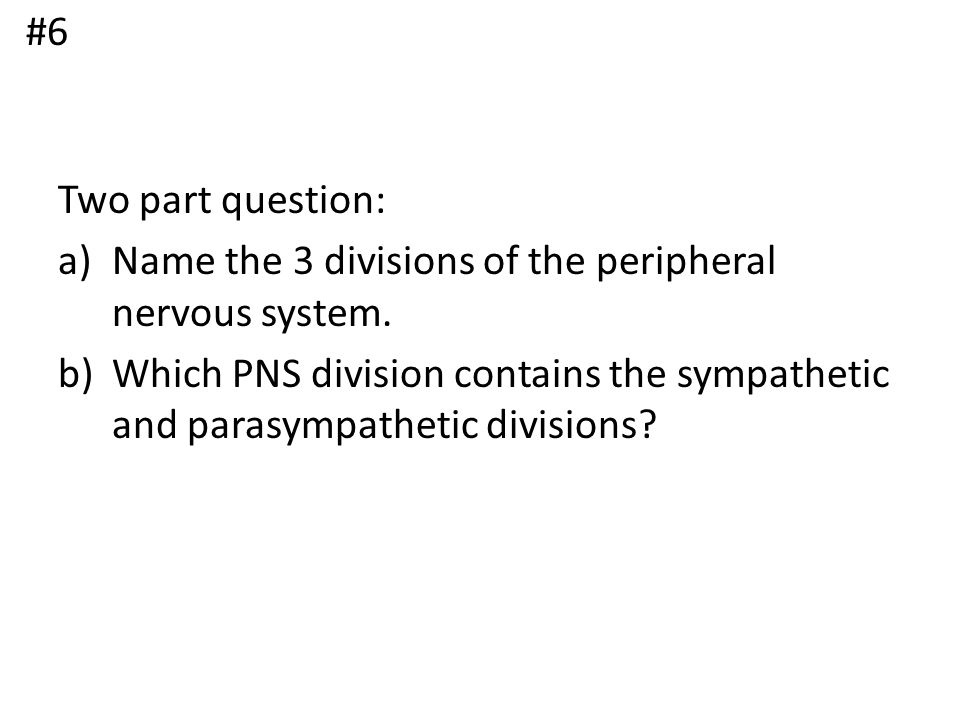 #6 Two part question: Name the 3 divisions of the peripheral nervous system.