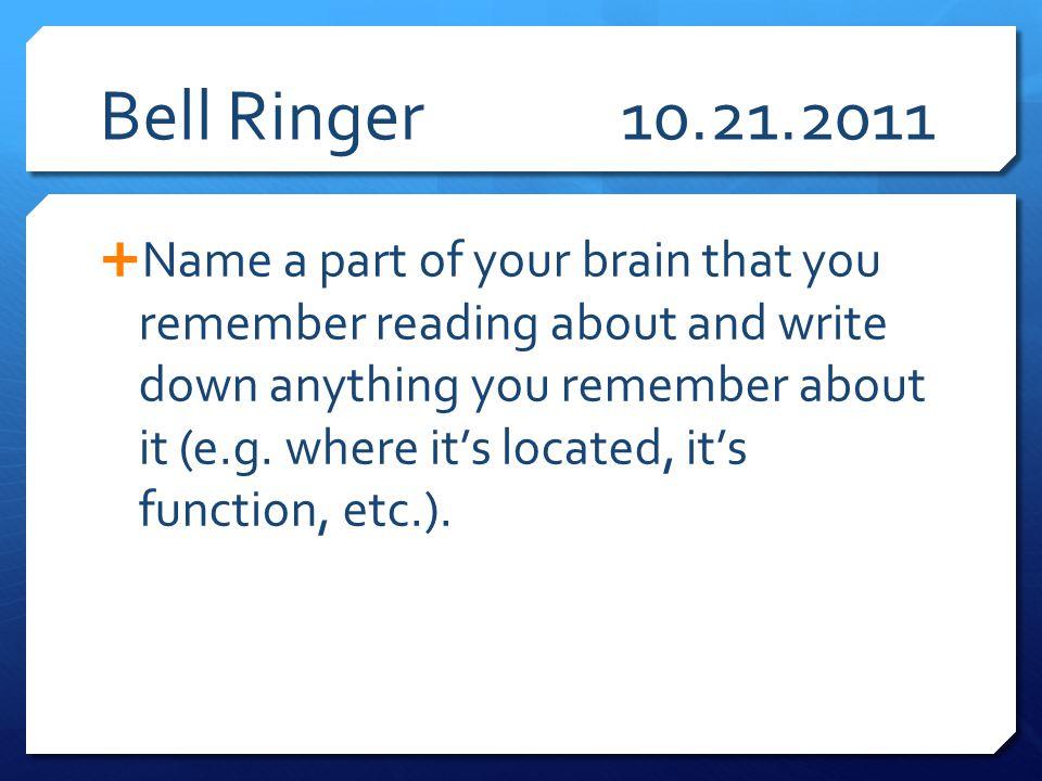 Bell Ringer 10.21.2011
