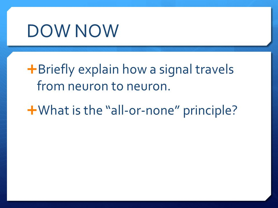 DOW NOW Briefly explain how a signal travels from neuron to neuron.