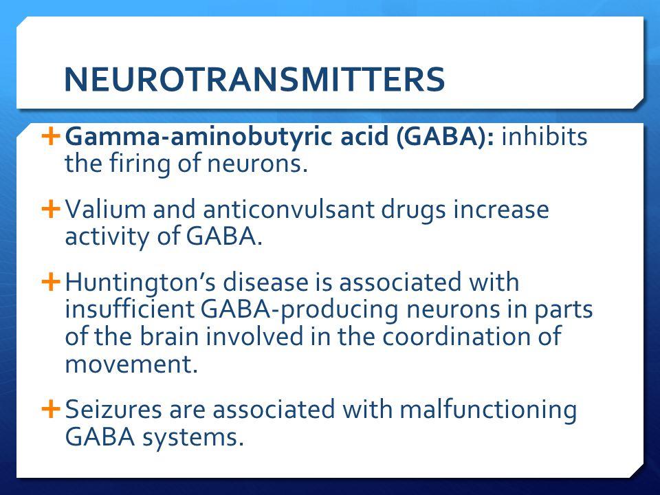 NEUROTRANSMITTERS Gamma-aminobutyric acid (GABA): inhibits the firing of neurons. Valium and anticonvulsant drugs increase activity of GABA.