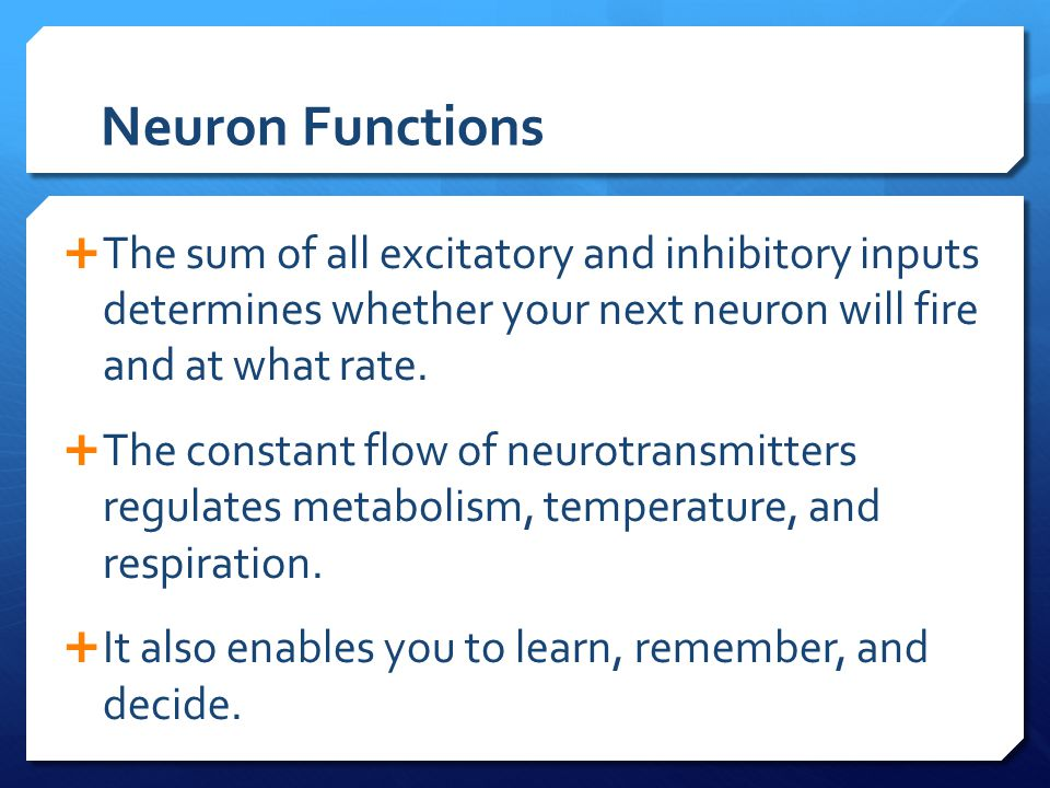 Neuron Functions The sum of all excitatory and inhibitory inputs determines whether your next neuron will fire and at what rate.