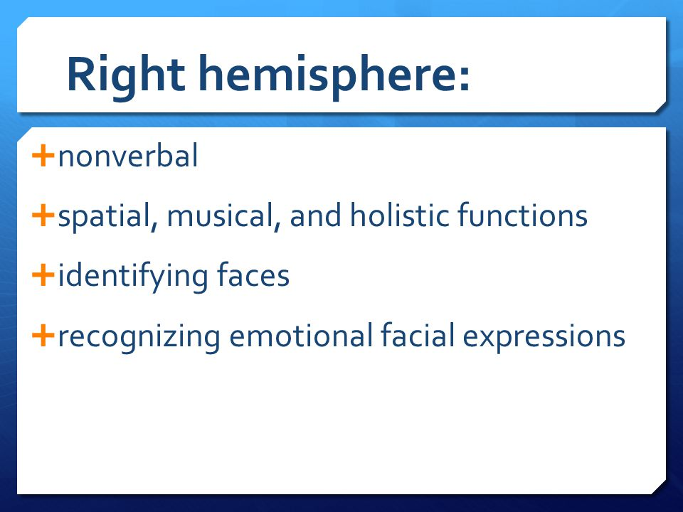 Right hemisphere: nonverbal spatial, musical, and holistic functions