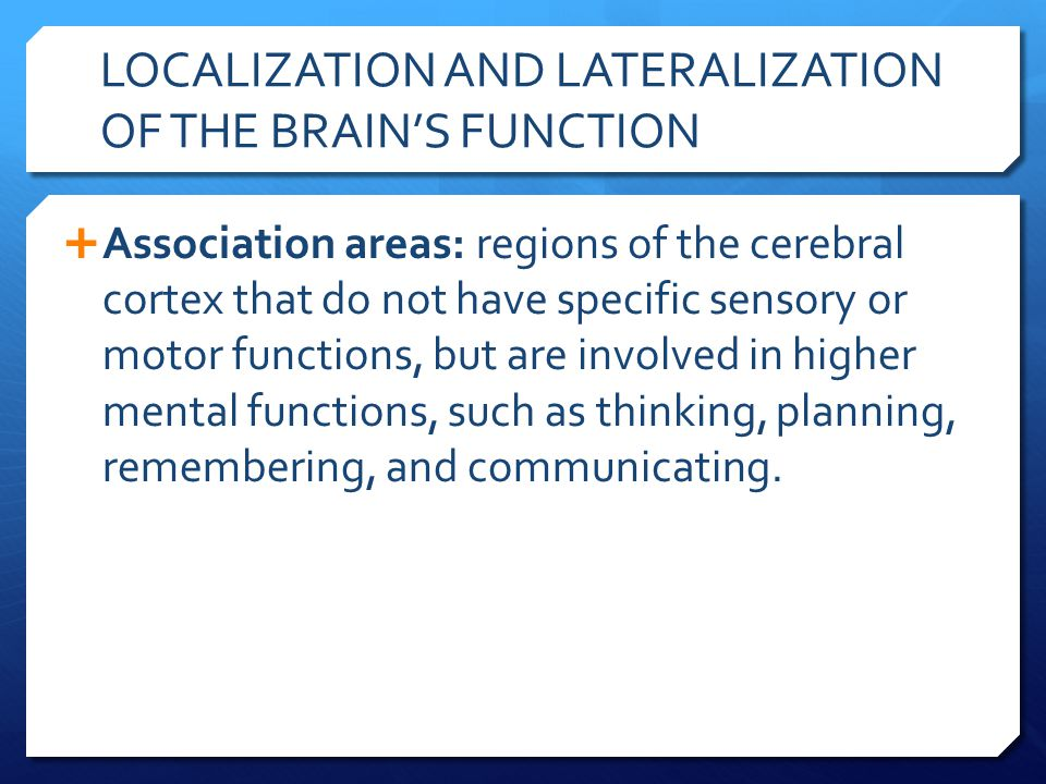 LOCALIZATION AND LATERALIZATION OF THE BRAIN'S FUNCTION