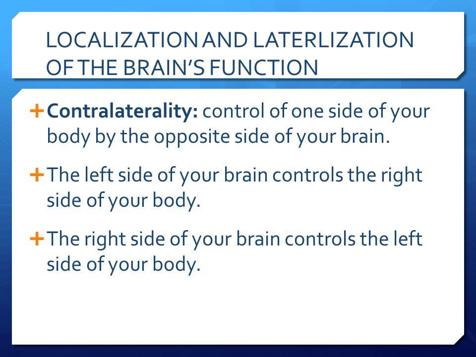 LOCALIZATION AND LATERLIZATION OF THE BRAIN'S FUNCTION