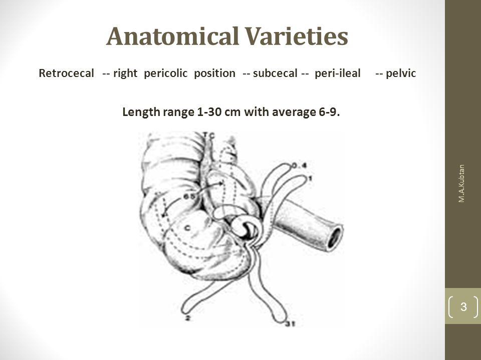 Length range 1-30 cm with average 6-9.