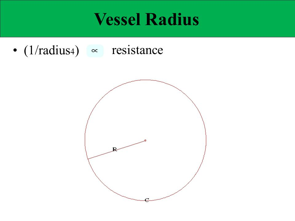 Vessel Radius • (1/radius4) resistance