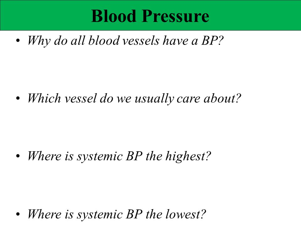 Blood Pressure • Why do all blood vessels have a BP