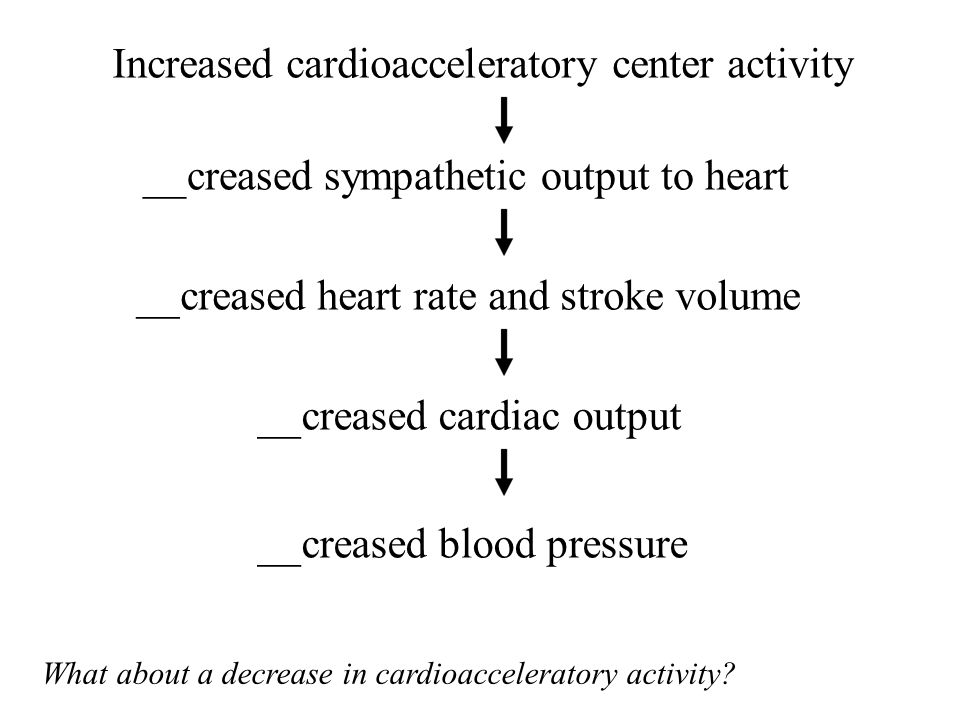 Increased cardioacceleratory center activity