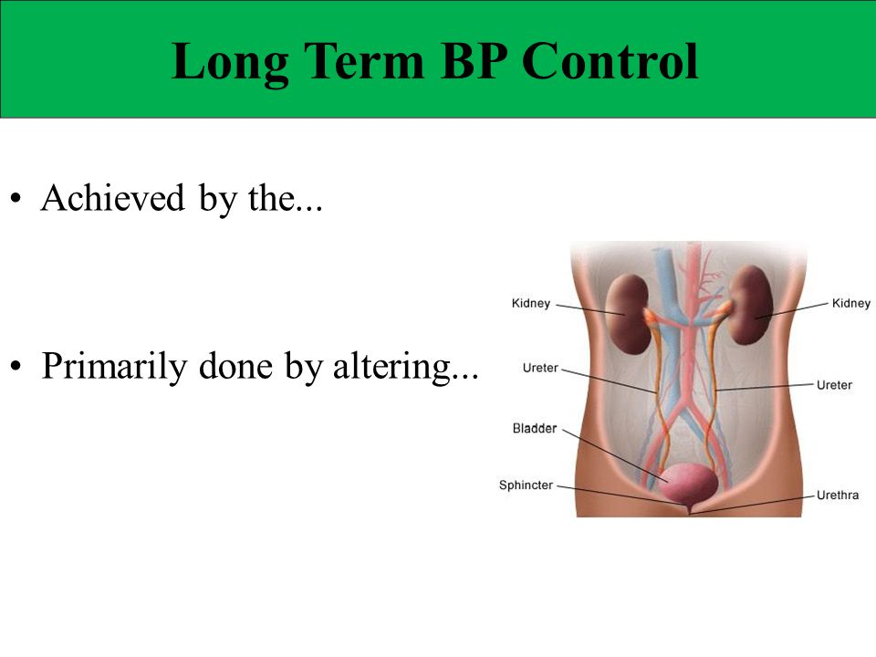 Long Term BP Control • Achieved by the...