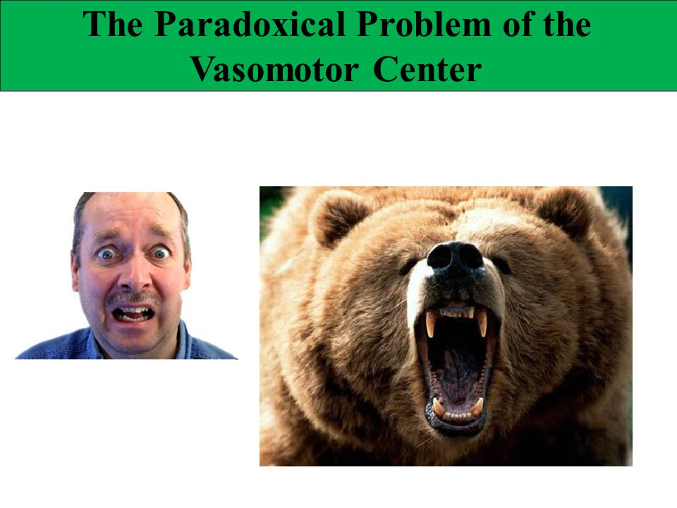 The Paradoxical Problem of the
