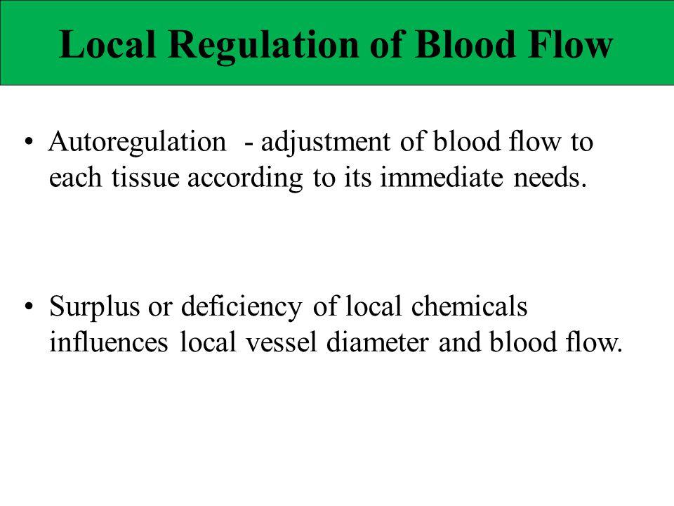 Local Regulation of Blood Flow