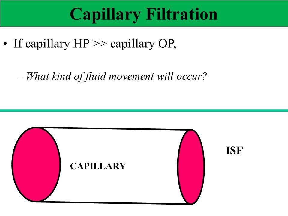 Capillary Filtration • If capillary HP >> capillary OP,