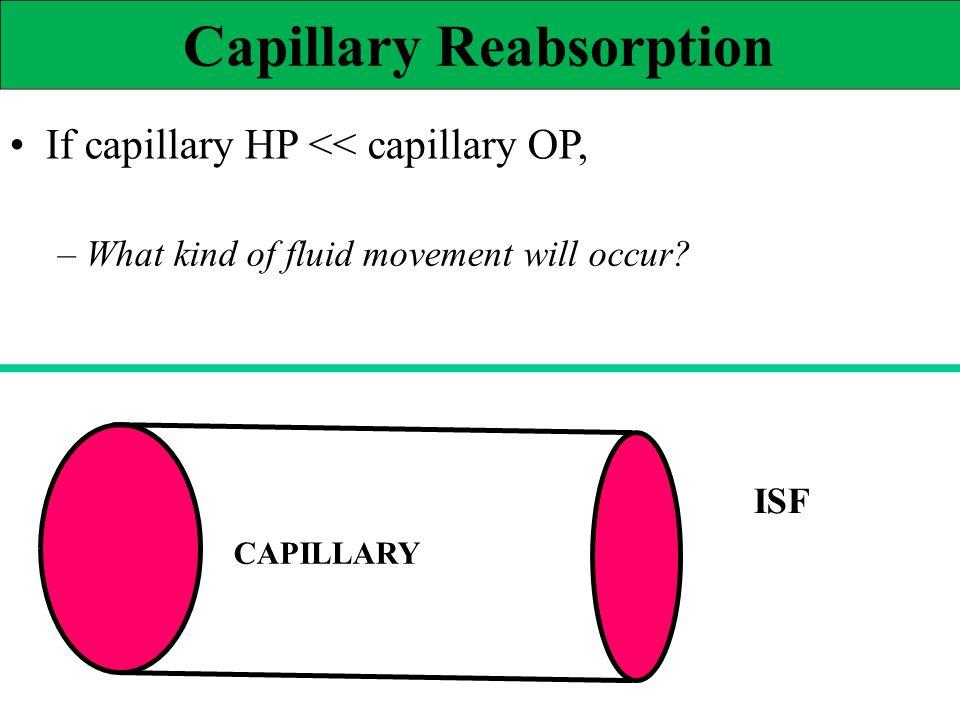 Capillary Reabsorption