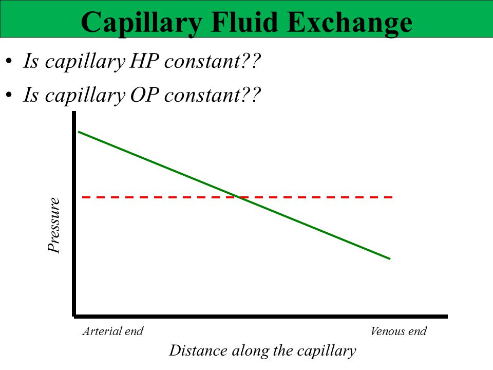• Is capillary HP constant • Is capillary OP constant