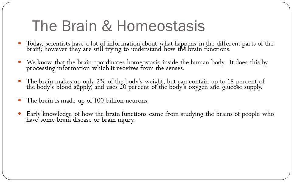 The Brain & Homeostasis