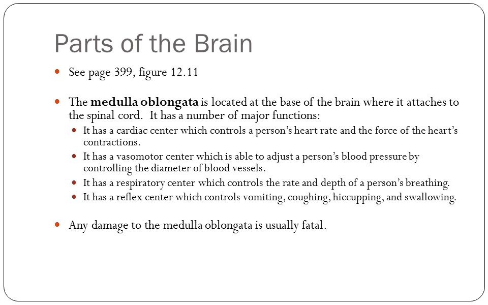 Parts of the Brain See page 399, figure 12.11