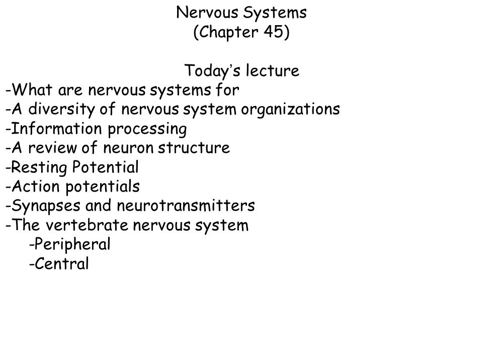 Nervous Systems (Chapter 45) Today's lecture. -What are nervous systems for. -A diversity of nervous system organizations.