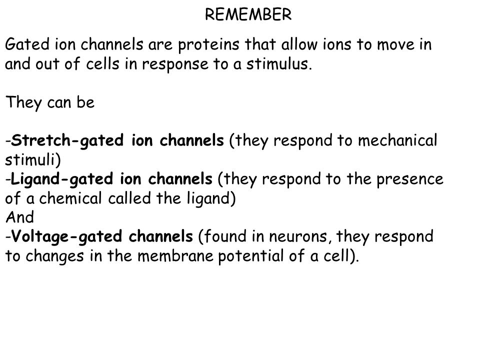 REMEMBER Gated ion channels are proteins that allow ions to move in and out of cells in response to a stimulus.