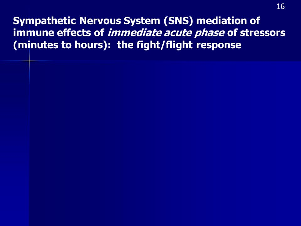 16 Sympathetic Nervous System (SNS) mediation of immune effects of immediate acute phase of stressors (minutes to hours): the fight/flight response.