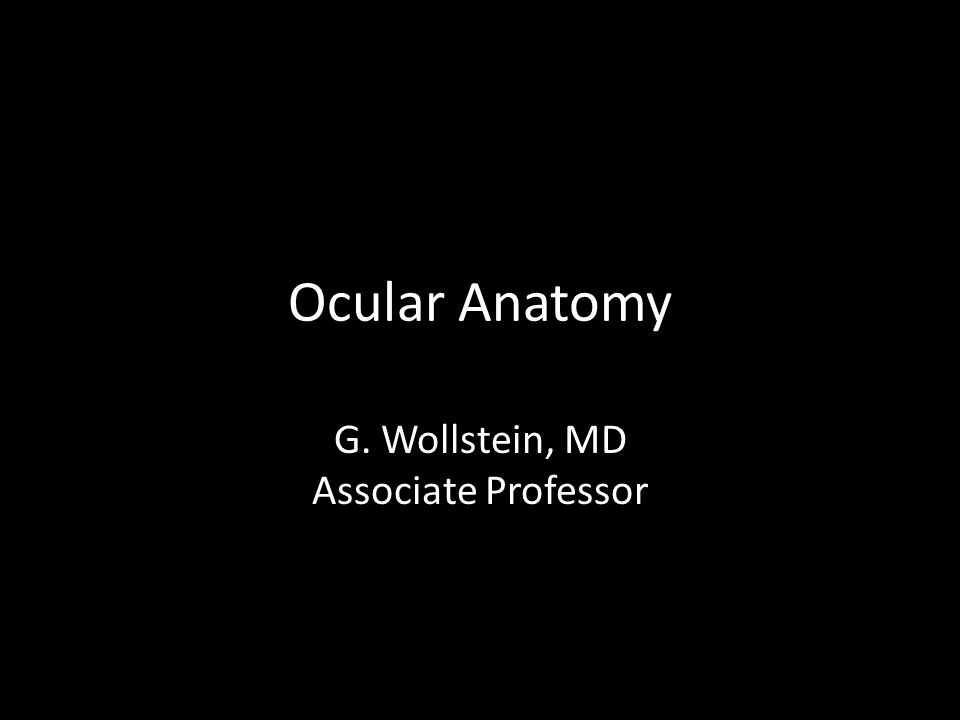 G. Wollstein, MD Associate Professor