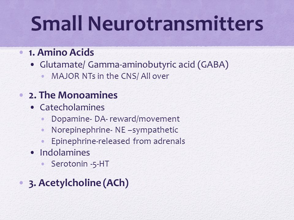 Small Neurotransmitters