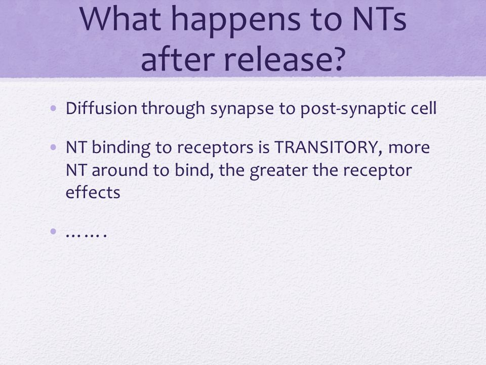 What happens to NTs after release