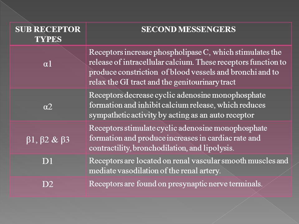 α1 α2 β1, β2 & β3 D1 D2 SUB RECEPTOR TYPES SECOND MESSENGERS