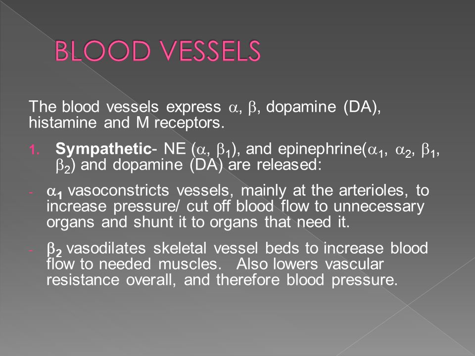 BLOOD VESSELS The blood vessels express , , dopamine (DA), histamine and M receptors.