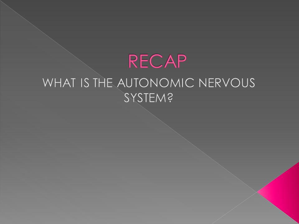 WHAT IS THE AUTONOMIC NERVOUS SYSTEM