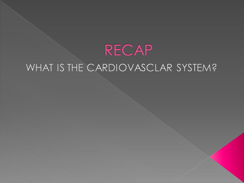 WHAT IS THE CARDIOVASCLAR SYSTEM