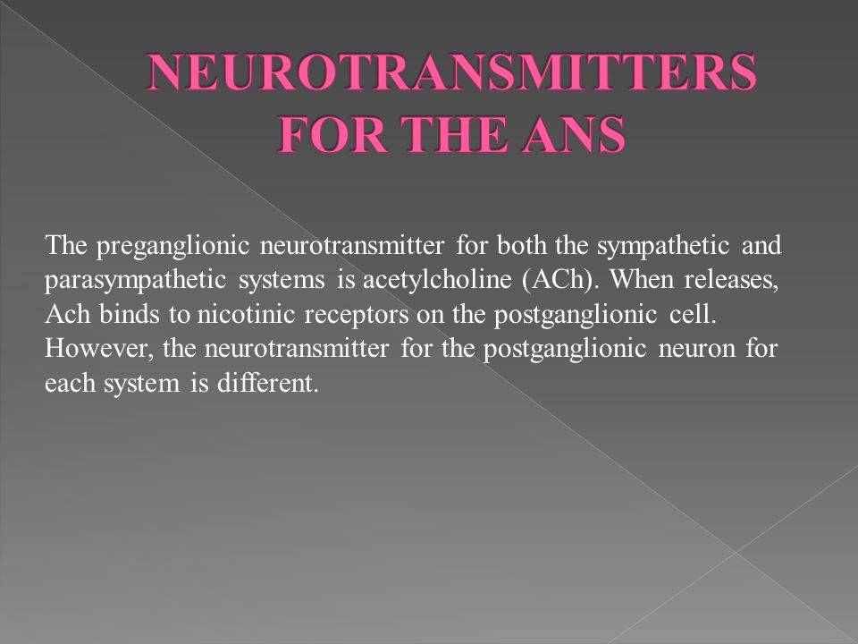 NEUROTRANSMITTERS FOR THE ANS