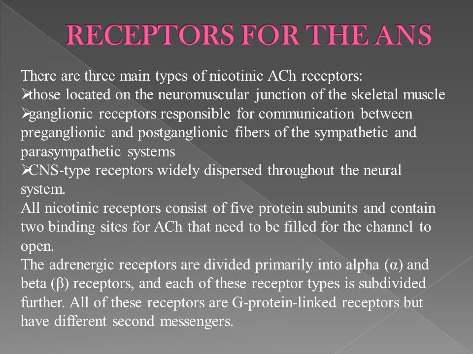 RECEPTORS FOR THE ANS There are three main types of nicotinic ACh receptors: those located on the neuromuscular junction of the skeletal muscle.