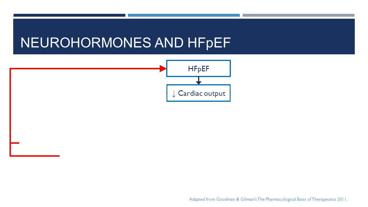Neurohormones and HFpEF