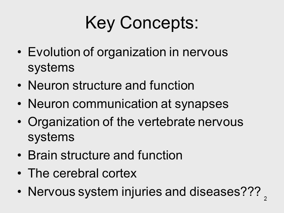 Key Concepts: Evolution of organization in nervous systems