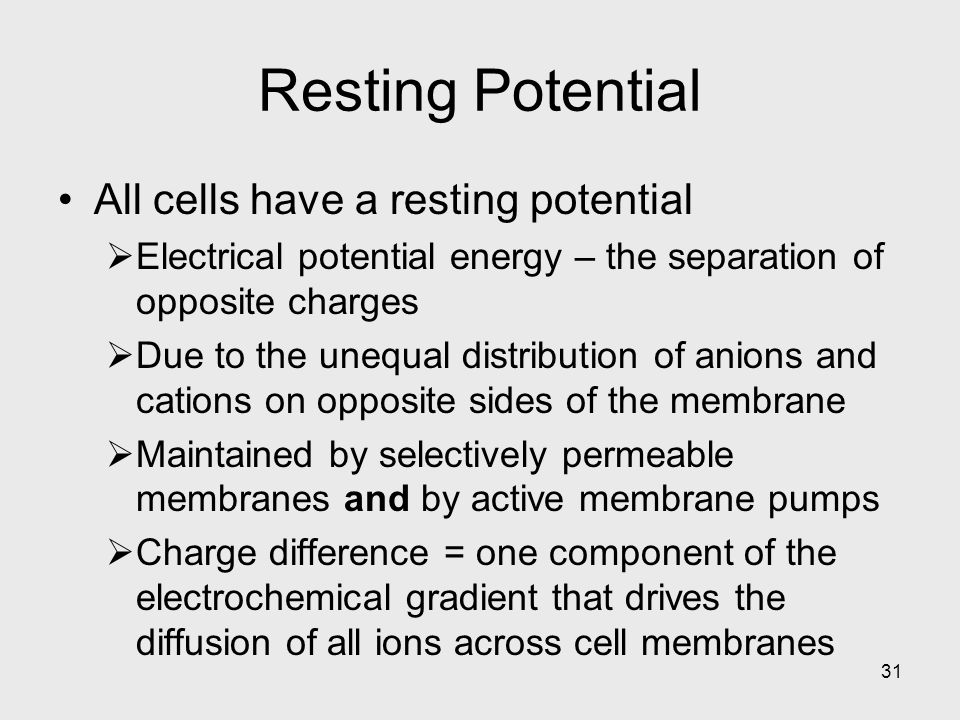 Resting Potential All cells have a resting potential