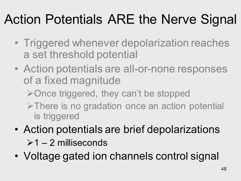 Action Potentials ARE the Nerve Signal