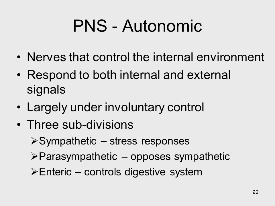 PNS - Autonomic Nerves that control the internal environment