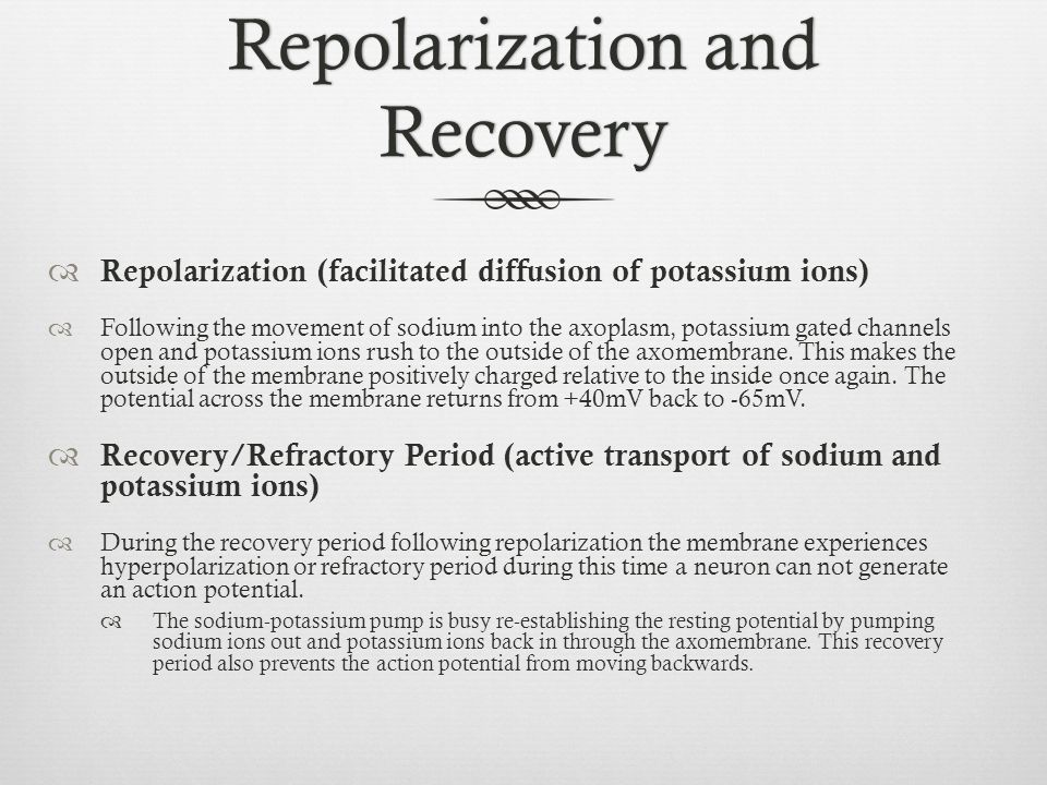 Repolarization and Recovery