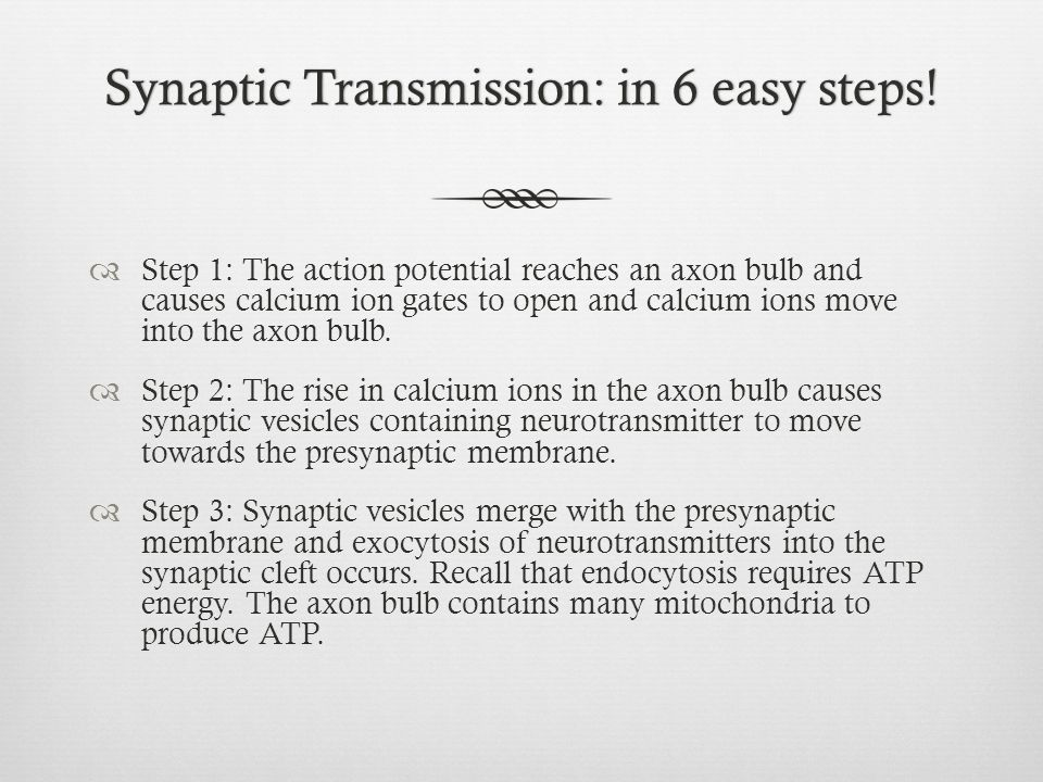 Synaptic Transmission: in 6 easy steps!