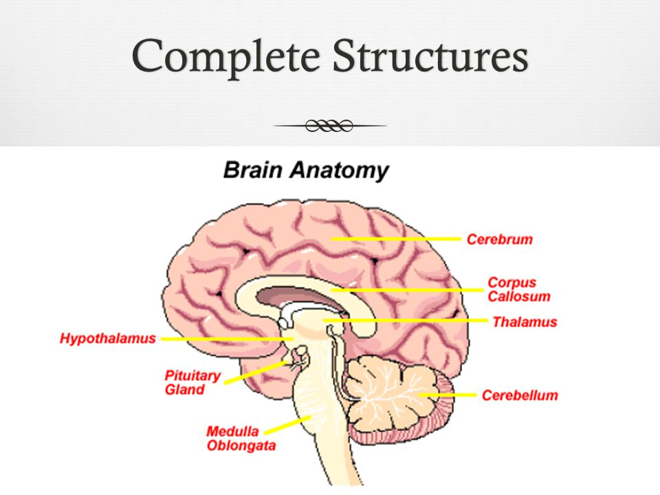 Complete Structures